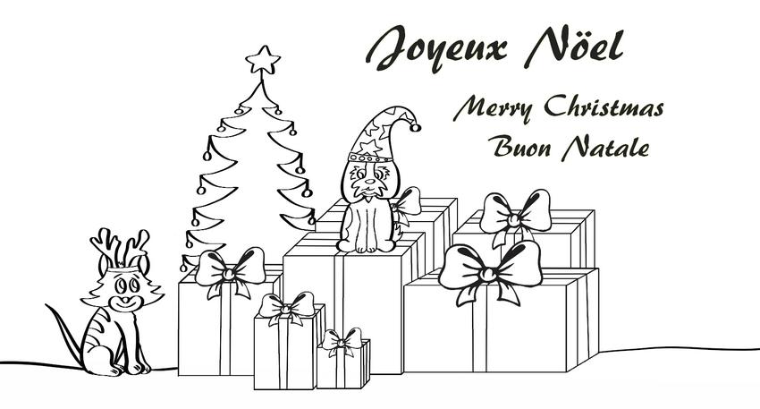 Dessin Joyeux Noel Les Aventures De Ecco Le Petit Shih Tzu